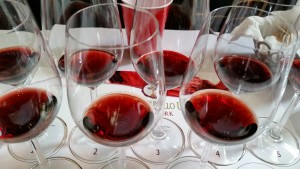 20150120_134726  brunello tasting glasses